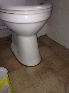 toilet before cleaning