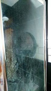 shower screen cleaning